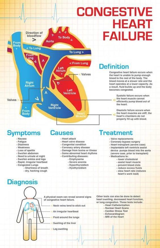 CHF infographics