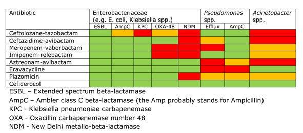 New Antibiotics Spectrum