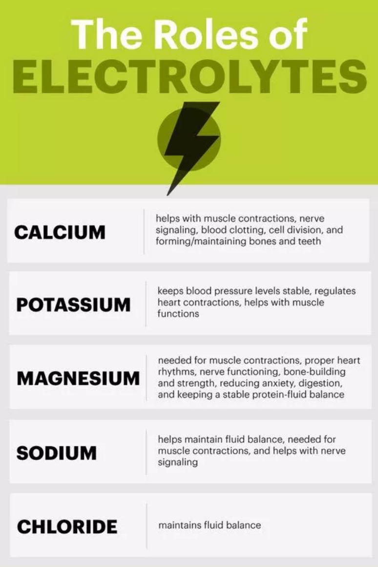 importance of electrolytes